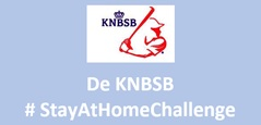 DE STAY-AT-HOME CHALLENGE